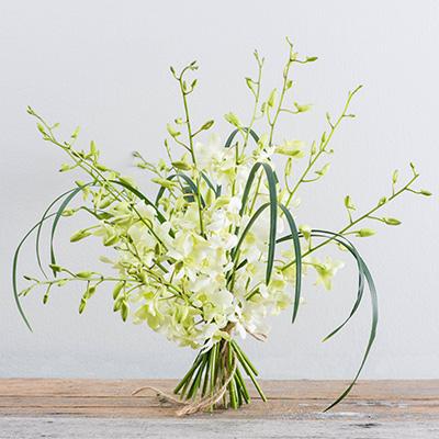 Flower Addict - Classic Orchid