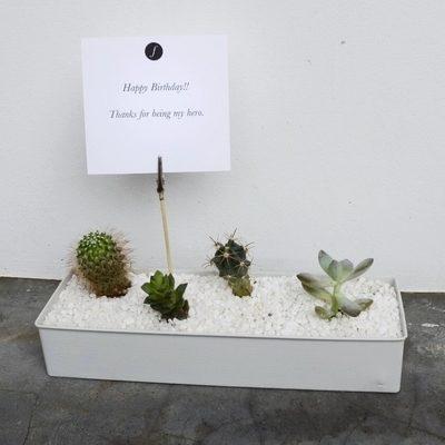 Flower Addict - Zen 2